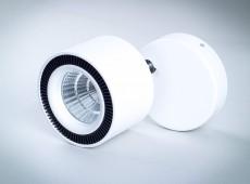 Reflektor nastropowy LED COB 30W z regulowanym kątem świecenia [RN30]