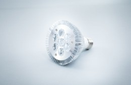 Żarówka LED Greenie – seria Spotlight