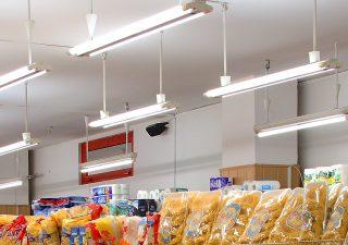 Świetlówki LED – czym są i czy warto je stosować?