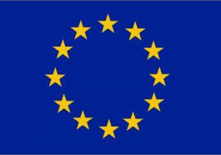Projekt- Internacjonalizacja firmy Greenie Polska