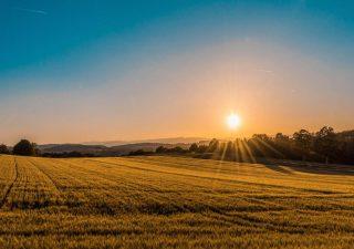 Jaki jest wpływ światła na zdrowie i samopoczucie człowieka?