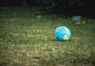 Sadź drzewa i wybieraj żarówki LED – proste gesty dla matki Ziemi
